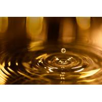 2020秋季廣州國際潤滑油品及技術設備展覽會